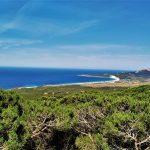 Mirador rutas senderismo parque natural el estrecho Cádiz Bolonia