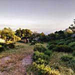 Mirador silla del papa parque natural del estrecho bosque mediterráneo rutas guiadas senderismo Cádiz