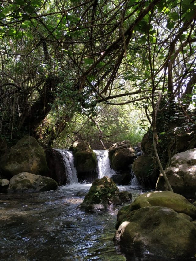 hiking in Grazalema natural park Cadiz waterfall nature forest in Cadiz Spain majaceite hiking route