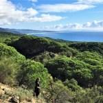 Ruta de senderismo guiado en el parque natural del Estrecho desde Betijuelo a Bolonia