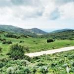 Ruta senderismo bosque mediterráneo en El estrecho natural park en Cadiz provincia desde El Pelayo en Tarifa a Algeciras
