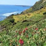 Ruta senderismo guiado privado Tarifa Cádiz