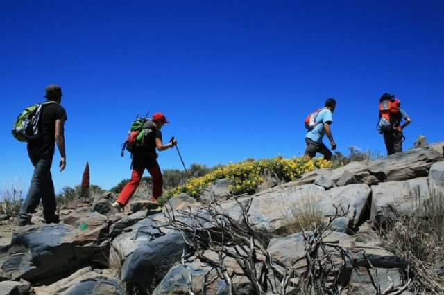 Teide national park vacaciones en la naturaleza en España