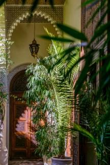 Pflanzen zieren viele Ecken der Riad.