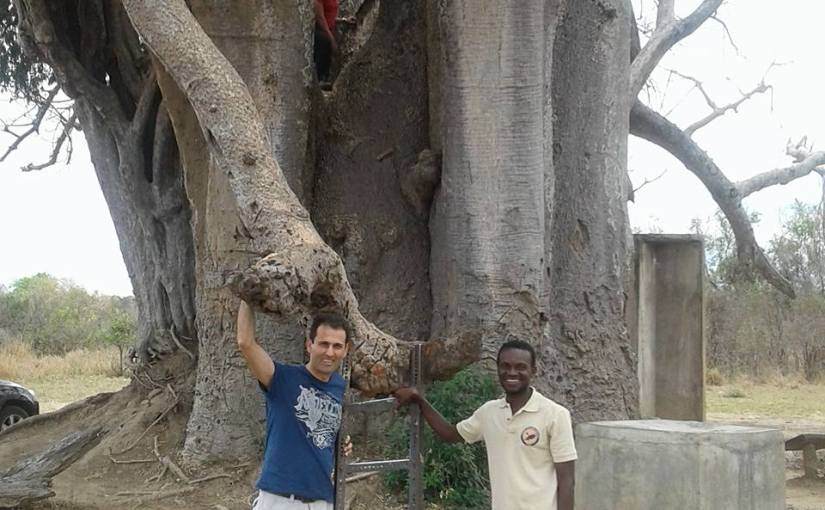 Let us talk aboutthe trees: Only in Tanzania