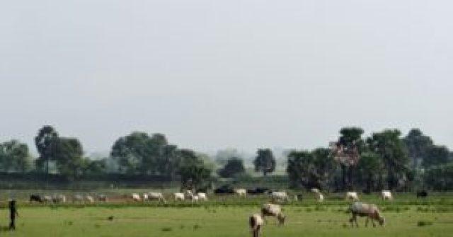 Gahlore Ghati_2