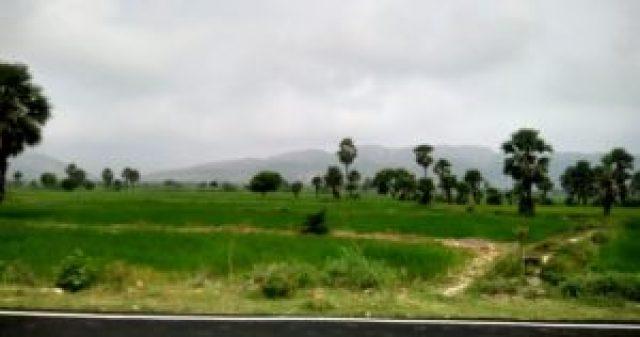 rajgir-bodhgaya road trip