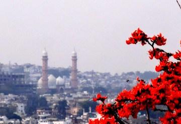 plan a trip to bhopal