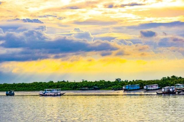 Boating in Sundarban forest