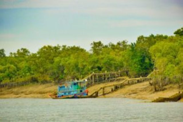 Sajnekhali watch point in Sundarban forest