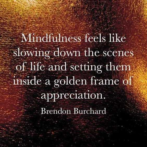 70 Brendon Burchard Motivational Quotes And Inspirational Life Sayings 43