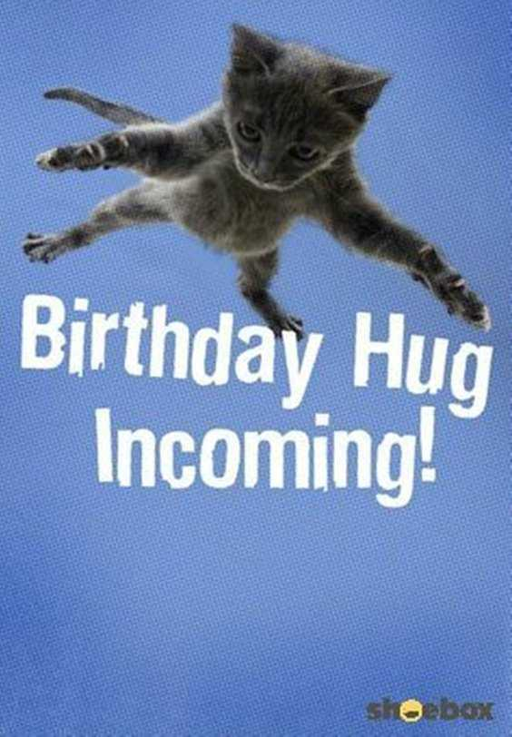 32 Best Funny Birthday Pictures Funny Birthday Quotes 22