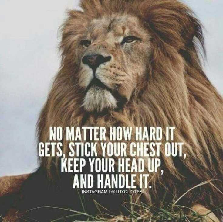 Inspirational Quotes I Like: 377 Motivational & Inspirational Quotes