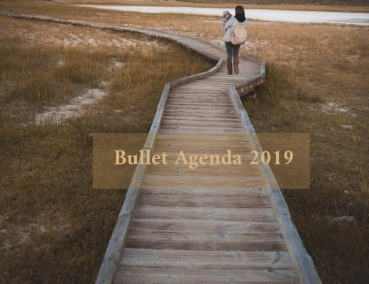 acheter agenda bullet parent maman