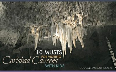 Carlsbad Caverns With Kids: 10 MUSTS For An Amazing Visit