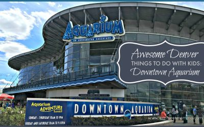 Denver Things to Do with Kids: Downtown Aquarium