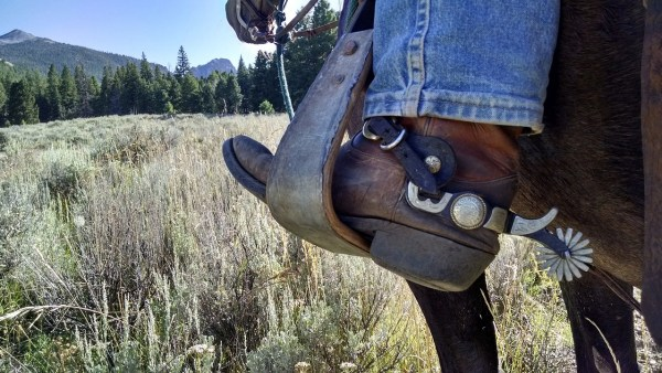 Things to do in Ruidoso, New Mexico, Horseback riding