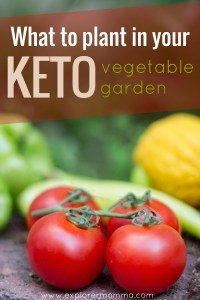 Keto vegetable garden, tomatoes