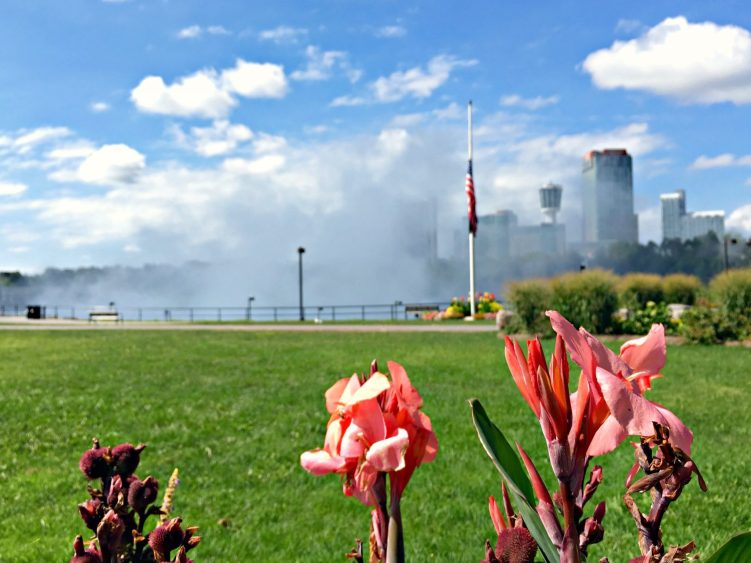 Flowers with Niagara Falls mist in the background. #operationusparks #explorermomma