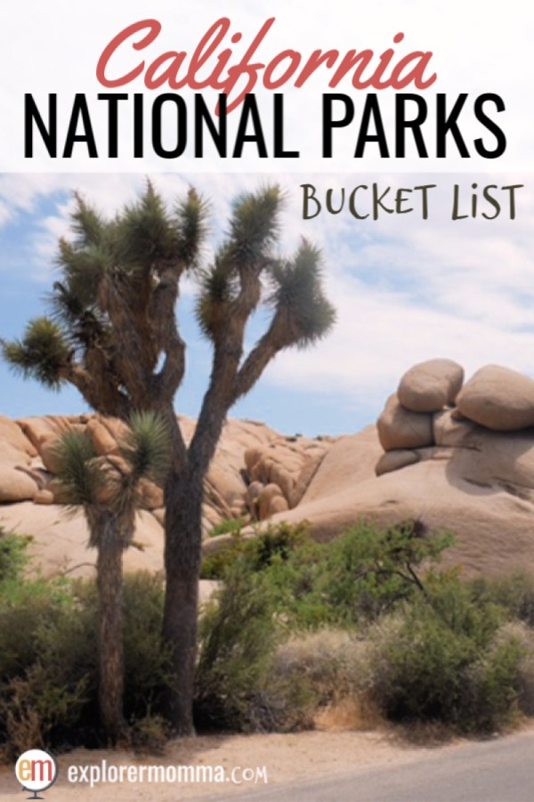 California National Parks Bucket List   Tips for amazing family travel to the Redwoods, Yosemite, and more! #californianationalparks #familytravel