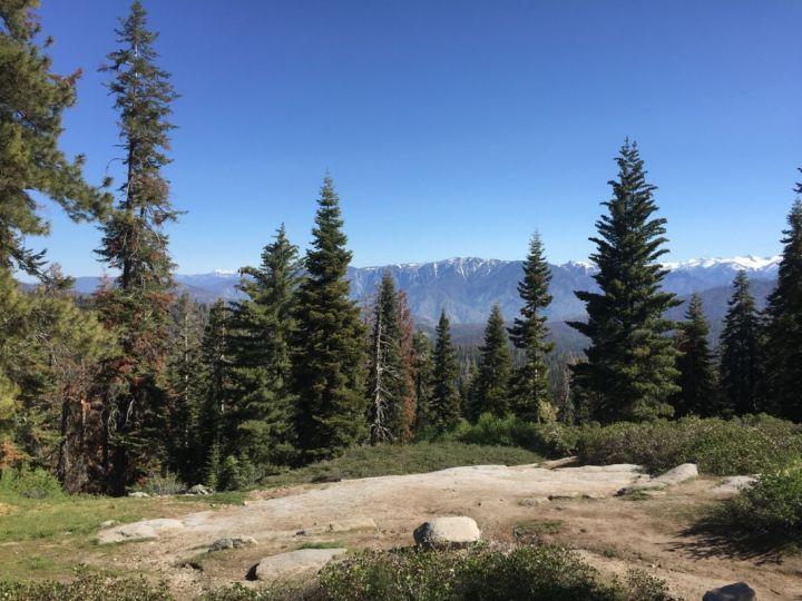 Sequoia National Park, California National Parks Bucket List #sequoianationalpark #familytravel