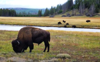 Northern States National Parks Bucket List