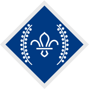 Image of the Chief Scout's Diamond Award