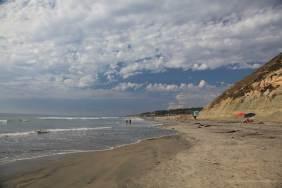 Torrey Pine Beach
