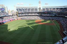 The view from left field
