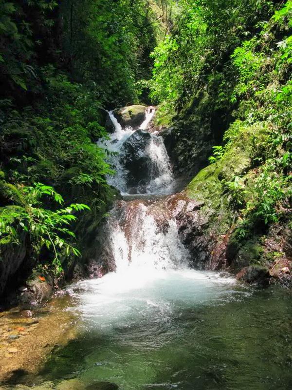 Aliran Sungai Curug Benowo Ungaran