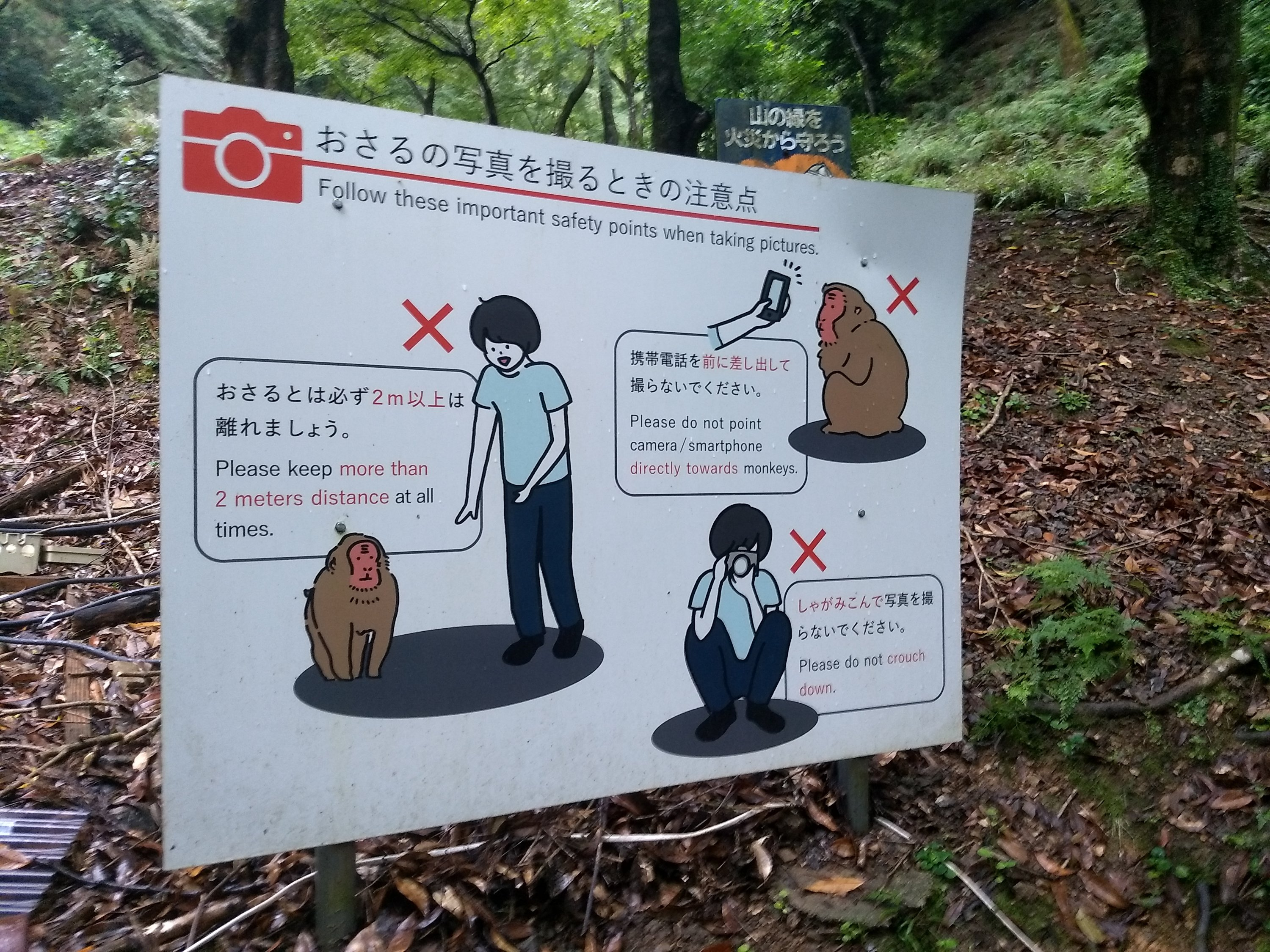 Warning Sign at Arashiyama Monkey Park