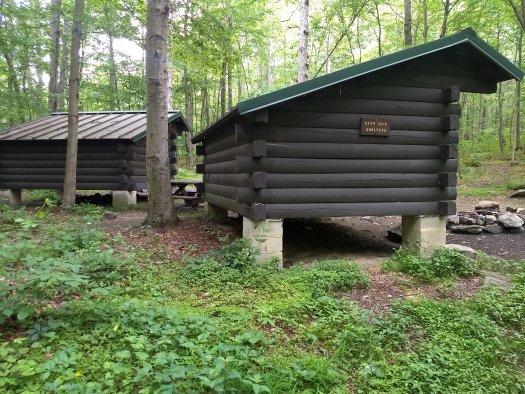 Deer Lick Shelter - 06-14-20