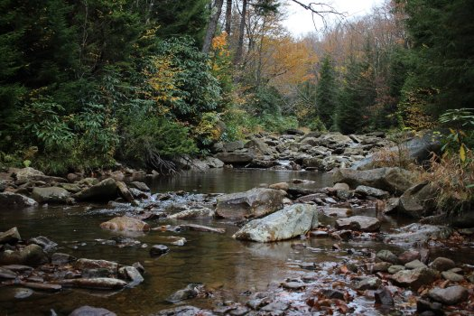 Red Creek next to camp - 10-10-2020