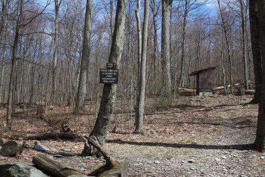 Pogo Campsite - 04-03-2021