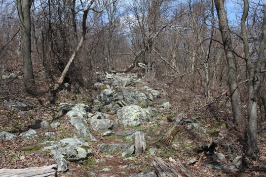 Rocky Terrain North of Black Rock - 04-03-2021