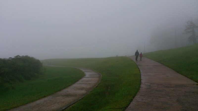 A father and son walk in the mist