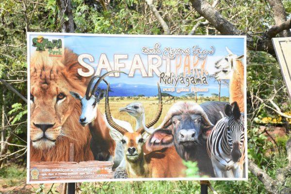 Safari Park Ridiyagama Name Board