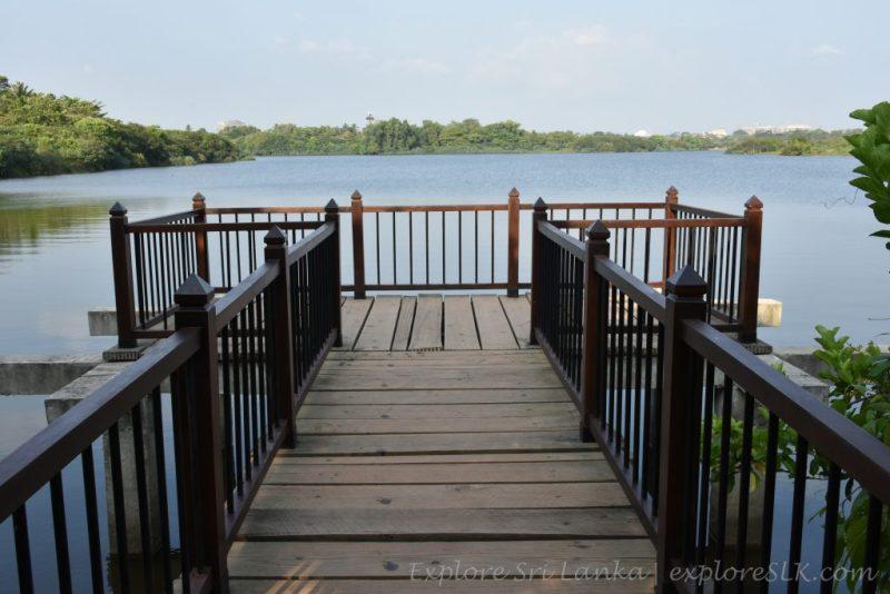 Timber Deck Over Diyawanna Lake