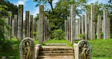 Stone Pillars at Thuparamaya