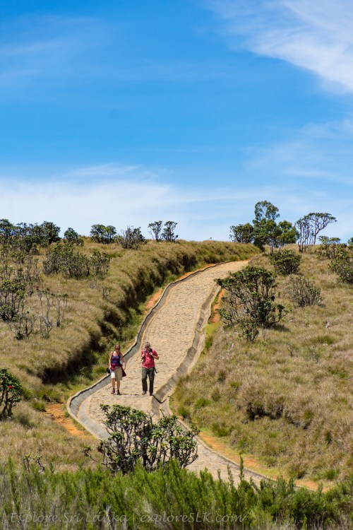 Foot paths of the Horton Plains National Park