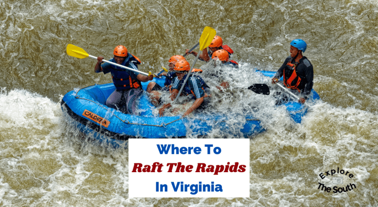 A raft full of folks with paddles getting splashed with the water as they are rafting the rapids