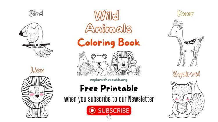 Wild Animals Coloring Book Free Printable