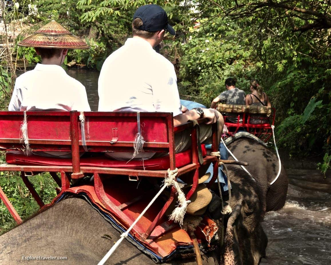 Riding Elephants and support for the elephant reserve