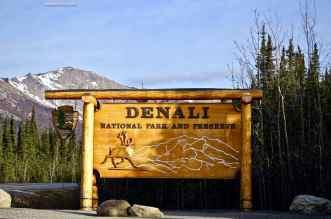 Welcome Denali National Park