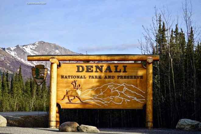 Welcome Denali <a  href=