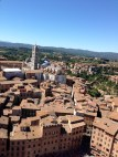 View of Siena from the tower.