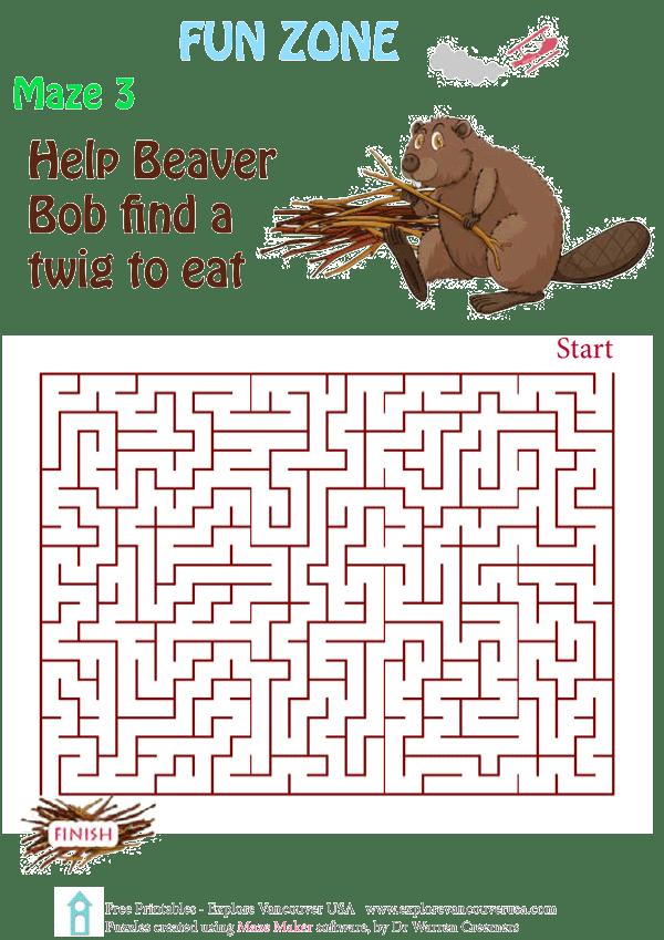 Beaver Bob Maze 3