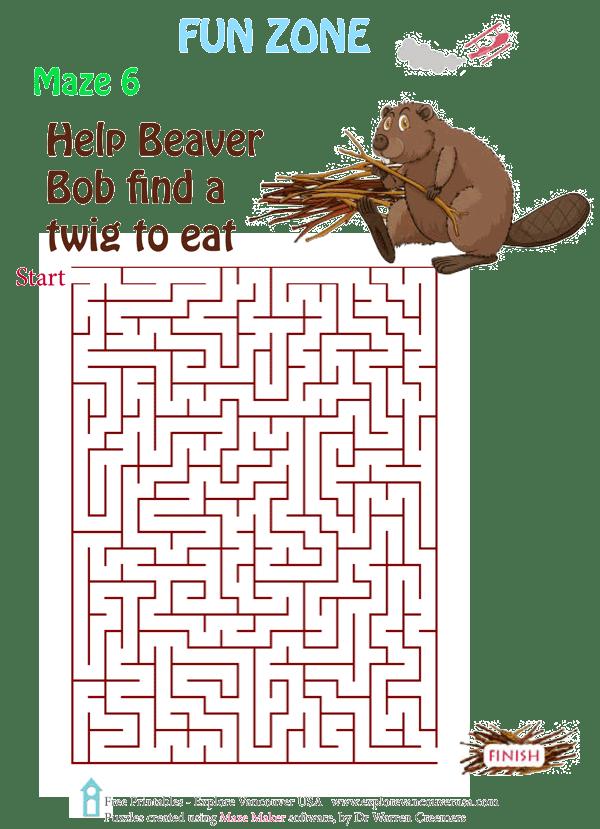 Beaver Bob Maze 6