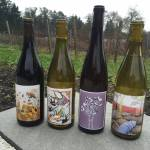 Alli Lanphear Vineyard & Winery - Vashon Island