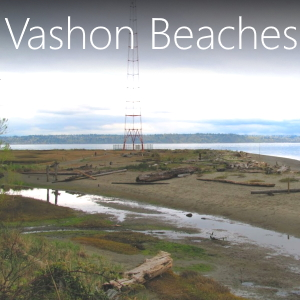 Great information on exploring the beaches of Vashon Island